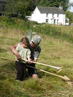 handmade hay rakes