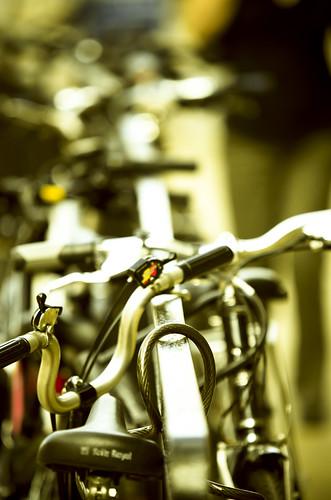 Bicycle Bokeh