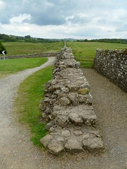 The curtain wall east of Birdoswald