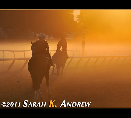 Saratoga Morning Glow
