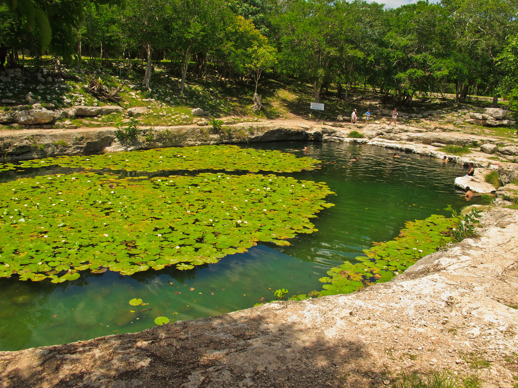 Cenote at Dzibilchaltun
