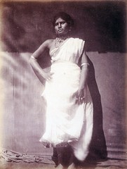 Untitled (Ceylon), 1875-9, by Julia Margaret Cameron