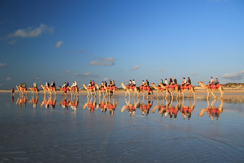 Camel Ride at Sunset, Cable Beach, Broome, Western Australia