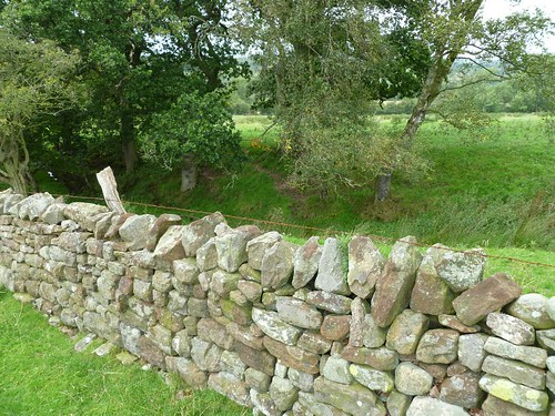 Field wall and ditch on Craggle Hill