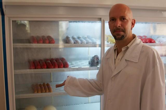 Neil Strauss Examines North Korean Ostrich Sausage