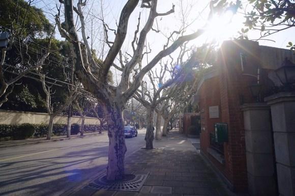 120324_shanghai06