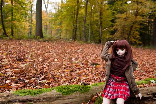 Yoko enjoying the autumn landscape