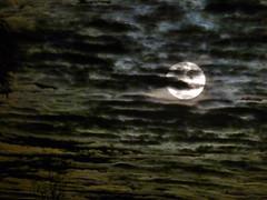 Overcast Moon 2