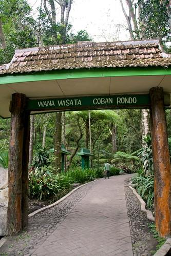 Cuban ROndo Entrance