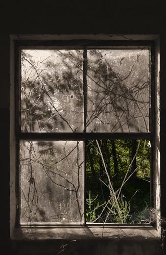 through the window sepia