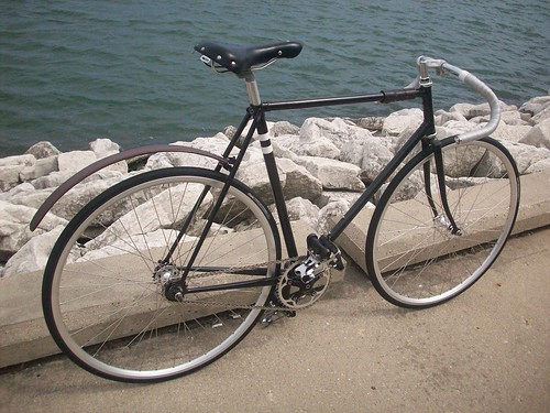 Schwinn World Sport Conversion