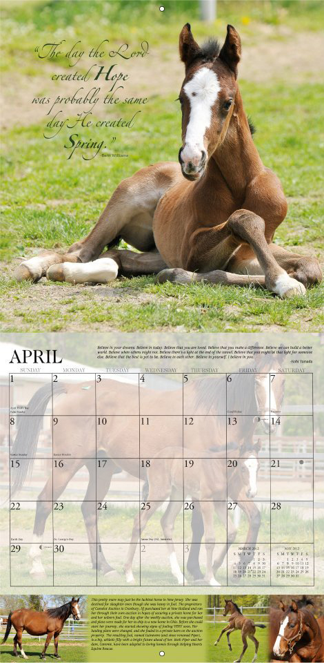 Sample page from my 2012 Horses and Hope calendar