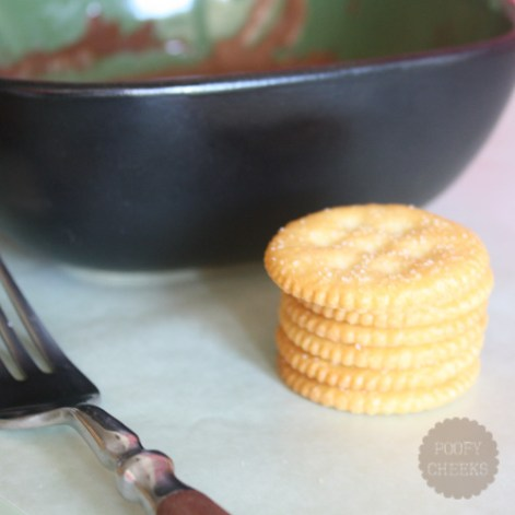 Homemade Thin Mint Cookies - two ingredients and 10 minutes