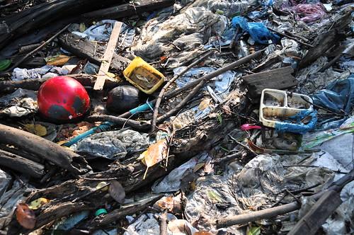 022pre-national-day-cleanup-lim_chu_kang-06aug2011[kpinto]
