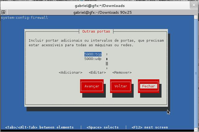 Portas adicionadas 5900:tcp e 5900:udp