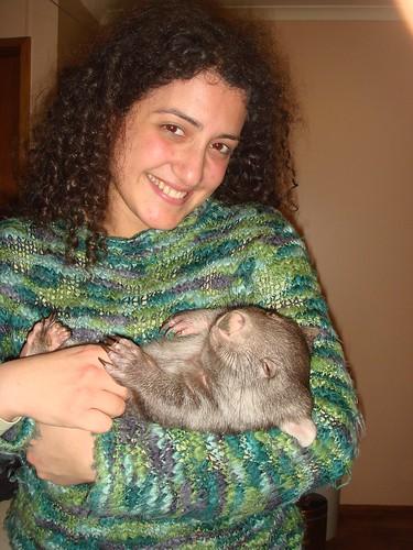 Ralph the wombat