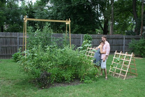 early-august garden.