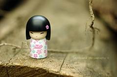 meet Hitomi