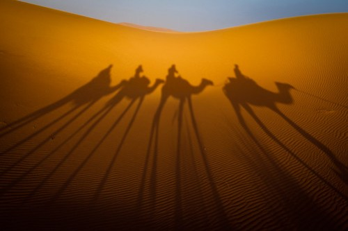 Camel Shadows by Eyebeam Photography, on Flickr