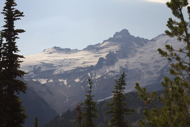 Shoulder of Mt. Rainier Through Trees
