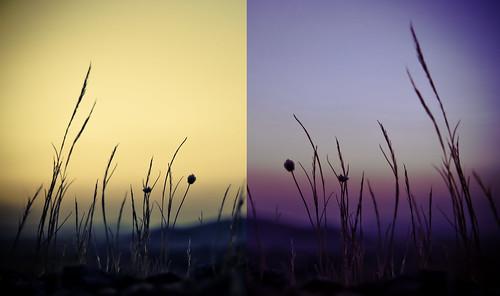 """006/365 Díptico """"Amanecer-Atardecer"""" by Flickr Jiménez (Pedro Nog)"""