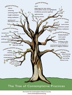 Tree of Contemplative Practices