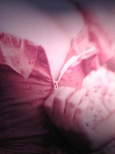 Helen Humphreys, La verità, soltanto la verità; Playground 2011. Graphic designer: Federico Borghi, alla cop.: fotg. col.: ©Diana Pinto. Copertina (part.), 6