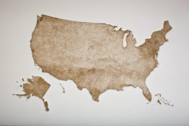Claire Fontaine, U.S.A. (burnt/unburnt)