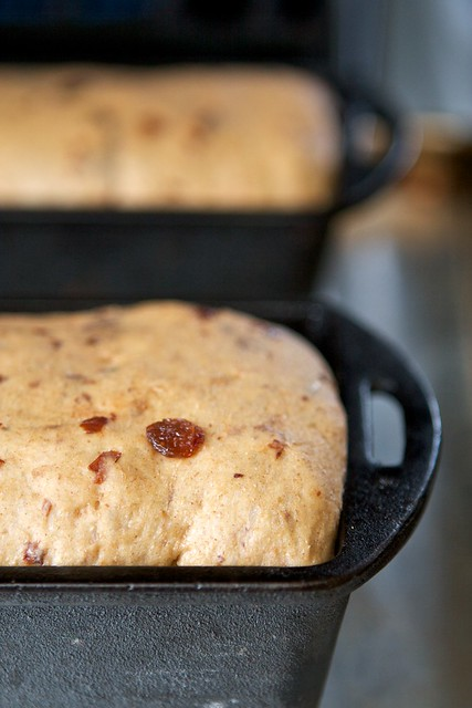 Whole Grain Cinnamon Raisin Bread (in cast iron) - Susy Morris