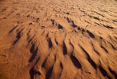 Wadi Rum - Small Desert Sand Dunes