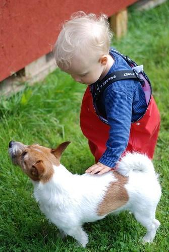 Tage Ögren klappar en hund på Sweden Social Web Camp 2011