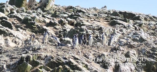 KLR 650 Trip Peru 206