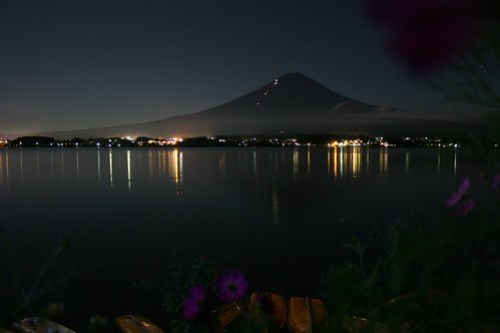 Fuji-san; cosmos; boats; Kawaguchiko