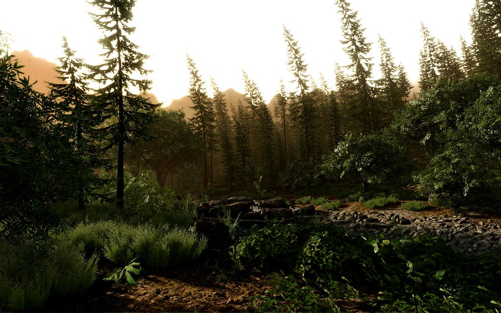 Crysis - My Forest map
