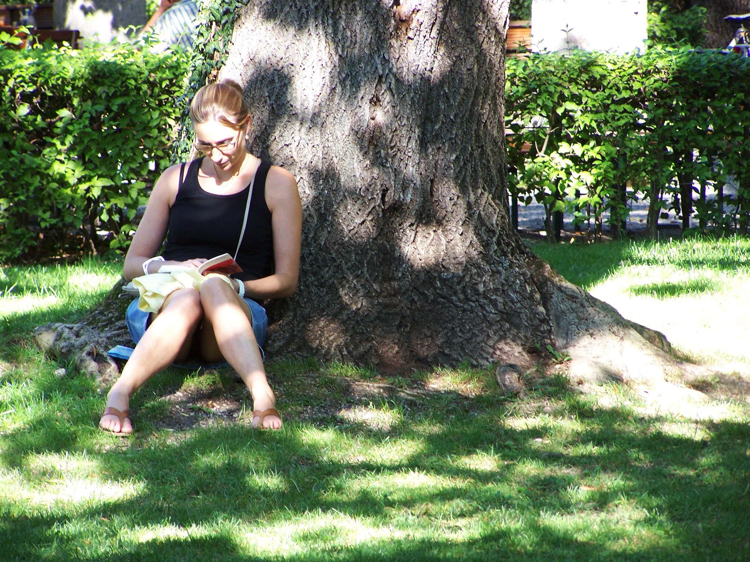 Alter Botanischer Garten, Sommer 2011