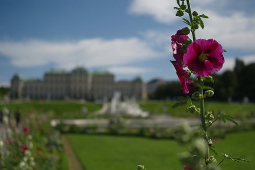 Schönes Schönbrunn
