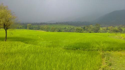 way to Chamba,  Himachal Pradesh