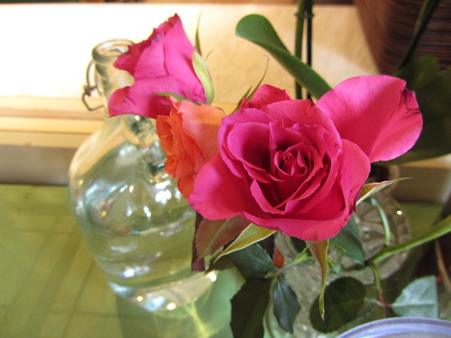 rose/water
