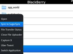 SugarSync for BlackBerry