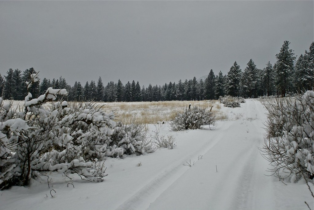 Snowy ranch road