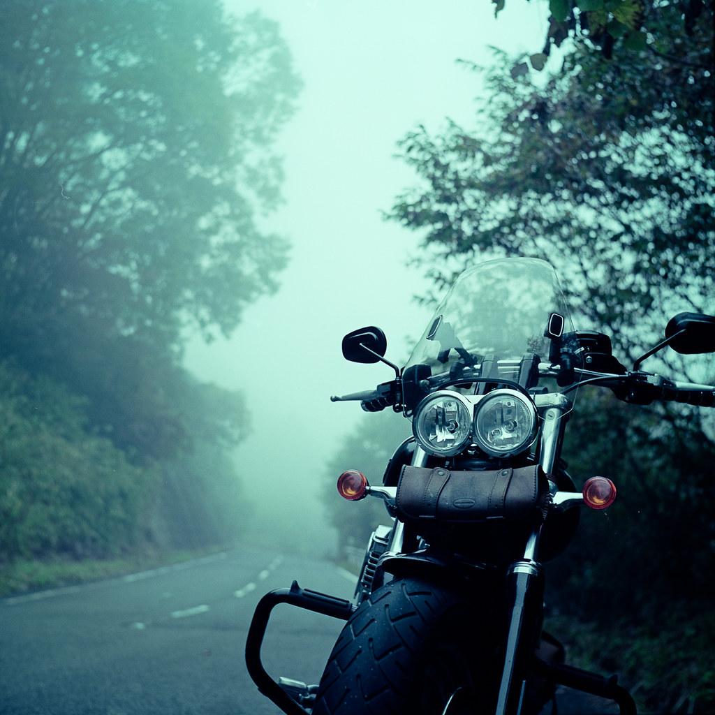 Riding through the mist_1