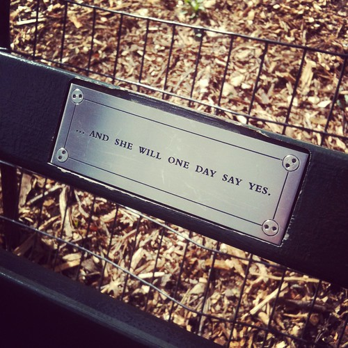 sittpaus i central park