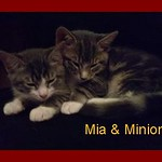 Mia and Minion