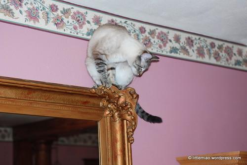 mirror chun 10-9-2011 6-29-24 PM