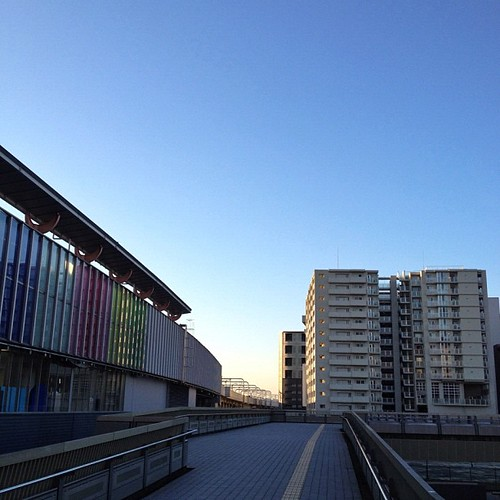 今日は、雲一つないいい天気ですね!ヾ(๑╹◡╹)ノ