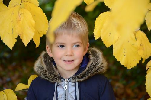 Johann unter Blättern