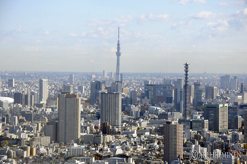 The amazing Skytree !