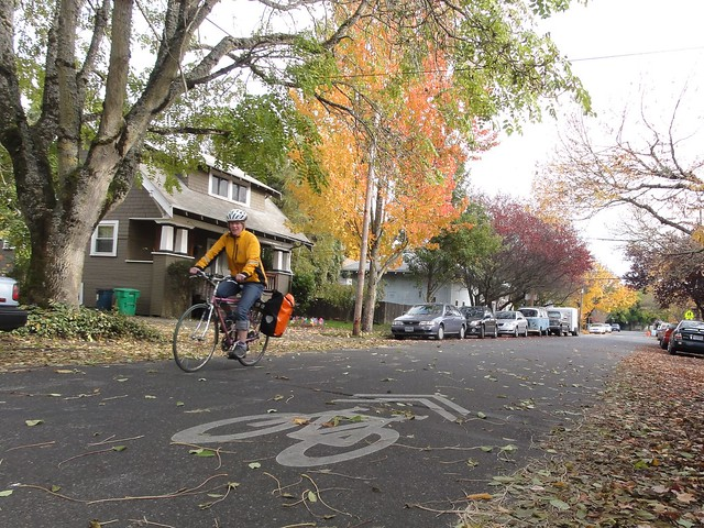 Fall Sharrow