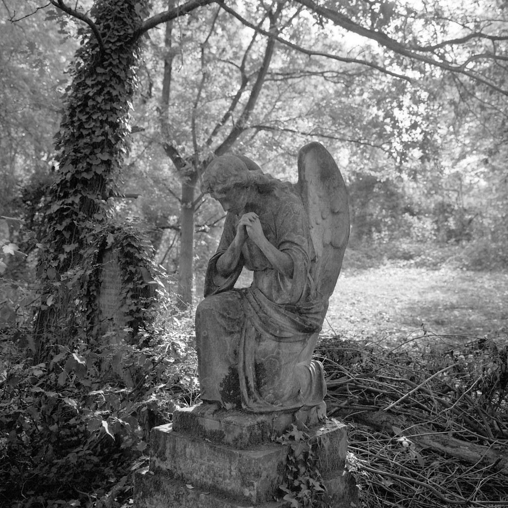 Angel, Nunhead