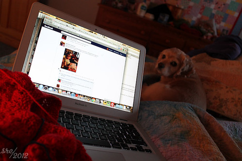 """January 23 -- Sick Day • <a style=""""font-size:0.8em;"""" href=""""http://www.flickr.com/photos/7983687@N06/6752728091/"""" target=""""_blank"""">View on Flickr</a>"""
